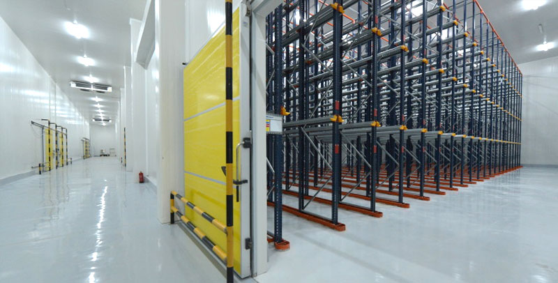 ALS – Jeddah Facility:   All rooms are completely ready with drive-in racking system.